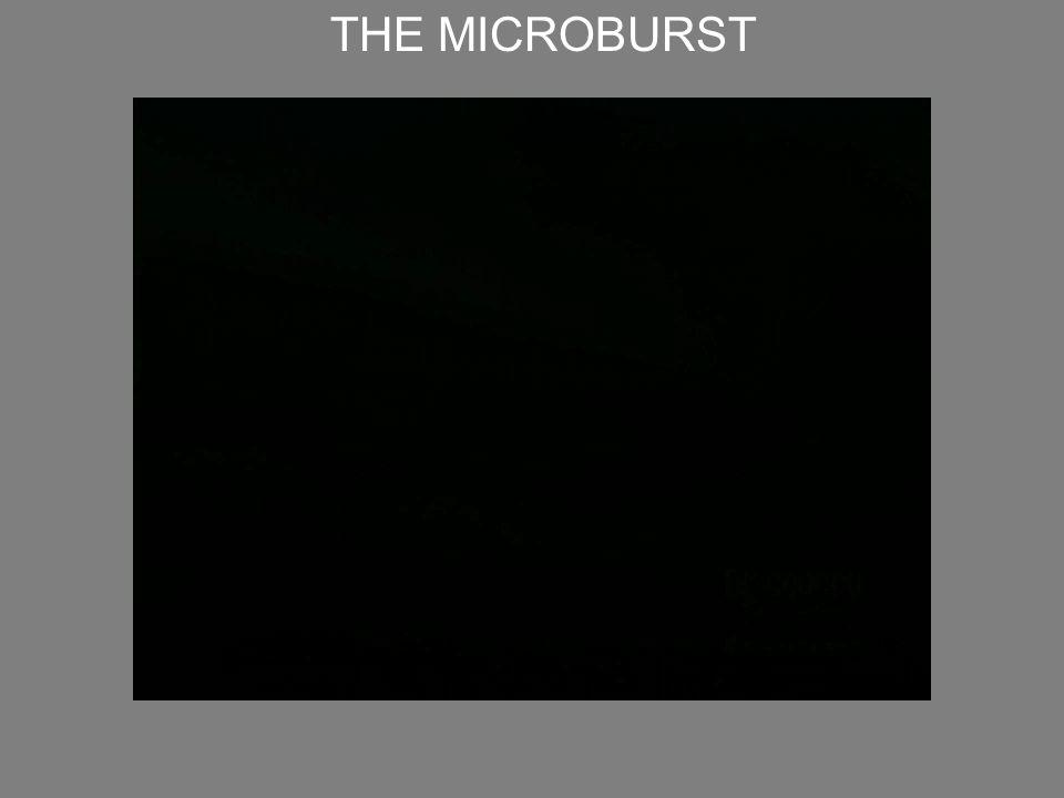 THE MICROBURST