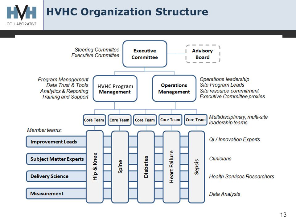 HVHC Organization Structure 13 HVHC Program