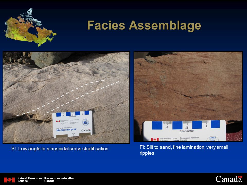 Facies Assemblage Sl: Low angle to sinusoidal cross stratification Fl: Silt to sand, fine lamination, very small ripples