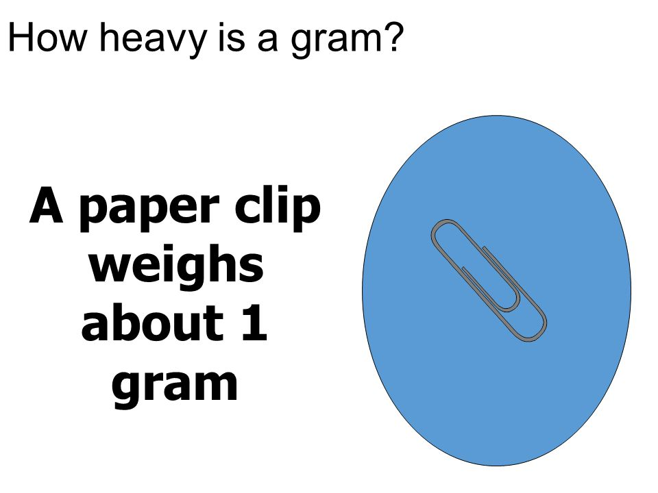 How heavy is a gram? A paper clip weighs about 1 gram