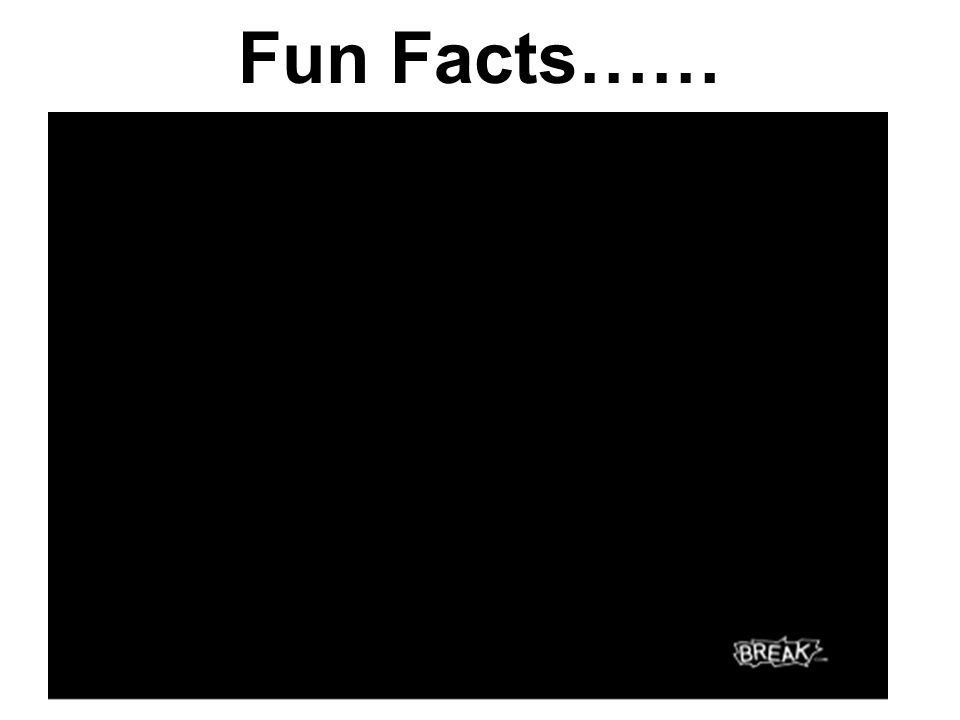 Fun Facts……