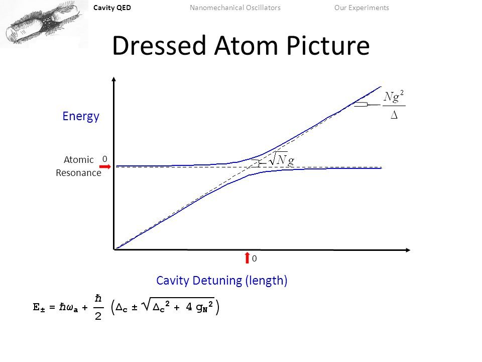 Cavity QEDNanomechanical OscillatorsOur Experiments Dressed Atom Picture Cavity Detuning (length) Energy 0 0 Atomic Resonance