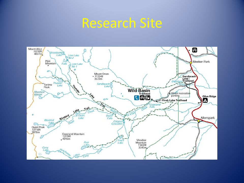 Research Site