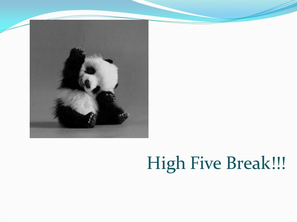High Five Break!!!