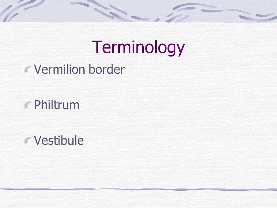 Terminology Vermilion border Philtrum Vestibule
