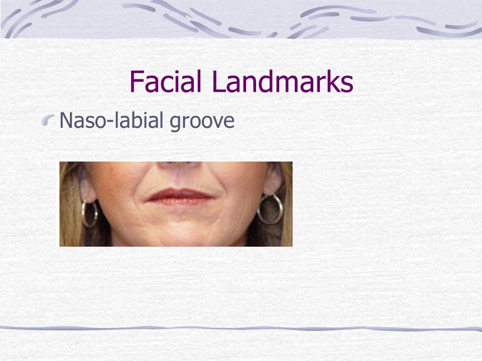 Facial Landmarks Philtrum