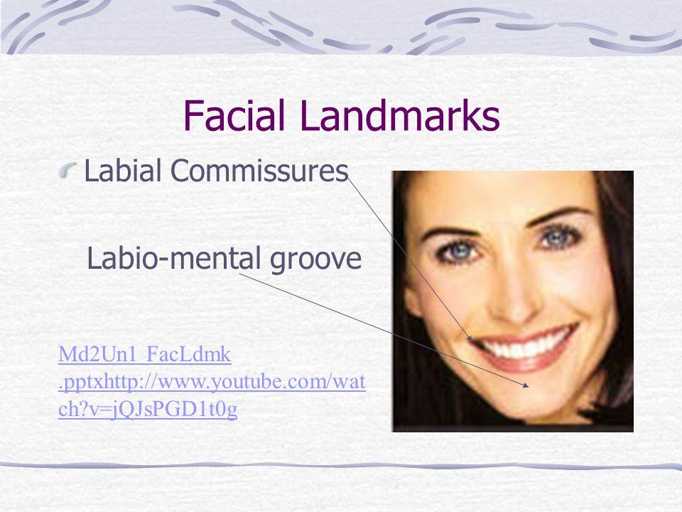 Oral Cavity Landmarks 1. Vestibule 2. Mucosa 3. Gingiva 4. Frenum 5. Palate