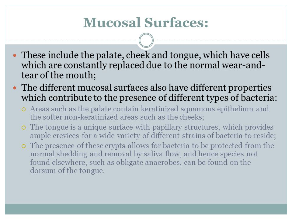 Mucosal Surfaces: These include the palate, cheek and tongue, which have cells which are constantly replaced due to the normal wear-and- tear of the mouth; The different mucosal surfaces also have different properties which contribute to the presence of different types of bacteria:  Areas such as the palate contain keratinized squamous epithelium and the softer non-keratinized areas such as the cheeks;  The tongue is a unique surface with papillary structures, which provides ample crevices for a wide variety of different strains of bacteria to reside;  The presence of these crypts allows for bacteria to be protected from the normal shedding and removal by saliva flow, and hence species not found elsewhere, such as obligate anaerobes, can be found on the dorsum of the tongue.