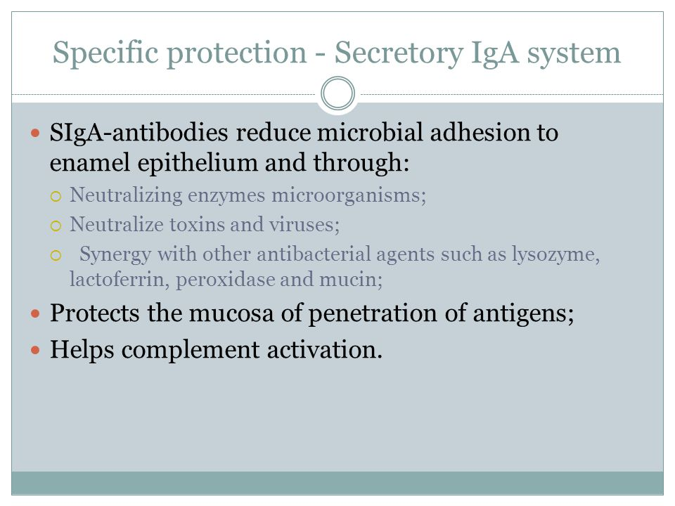 Specific protection - Secretory IgA system SIgA-antibodies reduce microbial adhesion to enamel epithelium and through:  Neutralizing enzymes microorganisms;  Neutralize toxins and viruses;  Synergy with other antibacterial agents such as lysozyme, lactoferrin, peroxidase and mucin; Protects the mucosa of penetration of antigens; Helps complement activation.