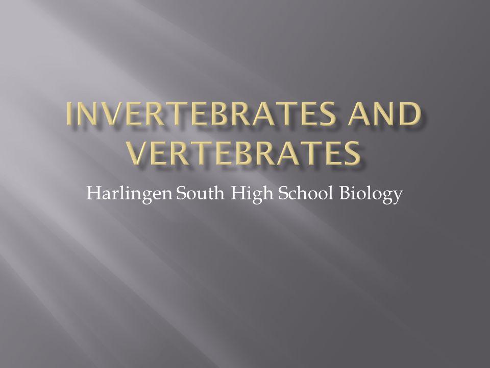 Harlingen South High School Biology
