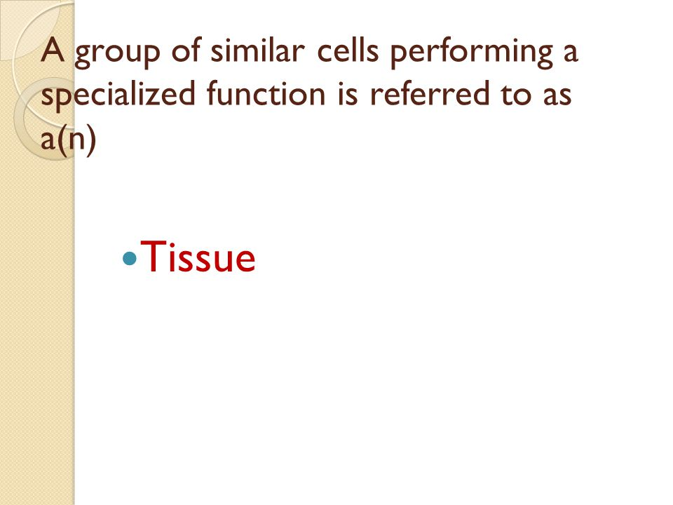 A group of similar cells performing a specialized function is referred to as a(n) Tissue