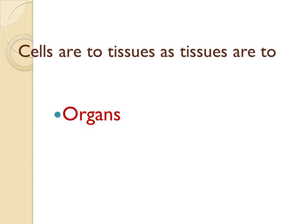 Cells are to tissues as tissues are to Organs