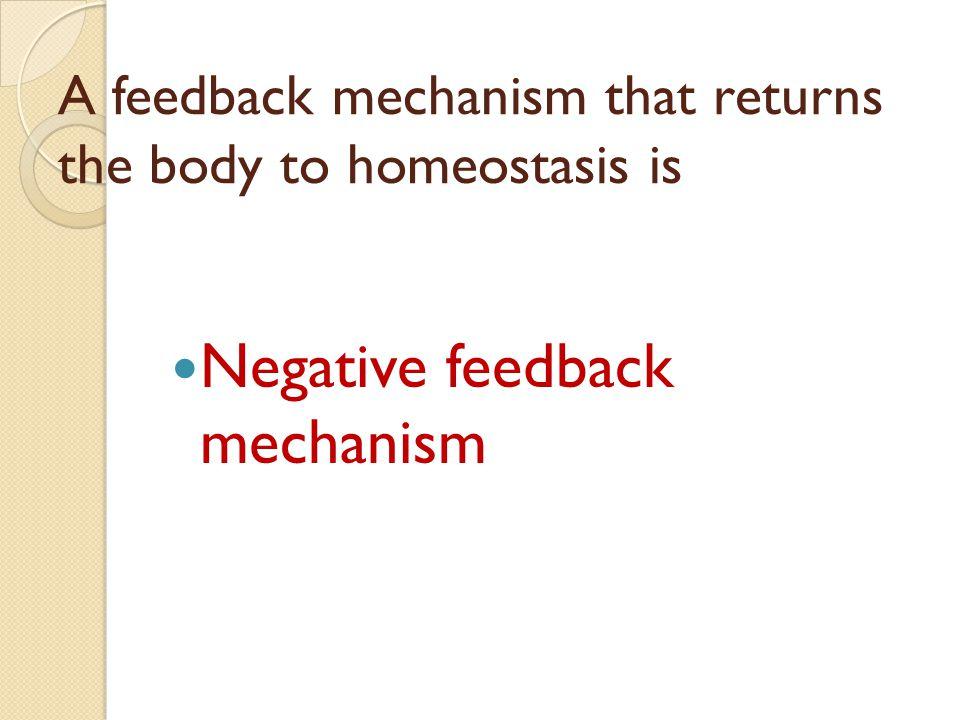 A feedback mechanism that returns the body to homeostasis is Negative feedback mechanism