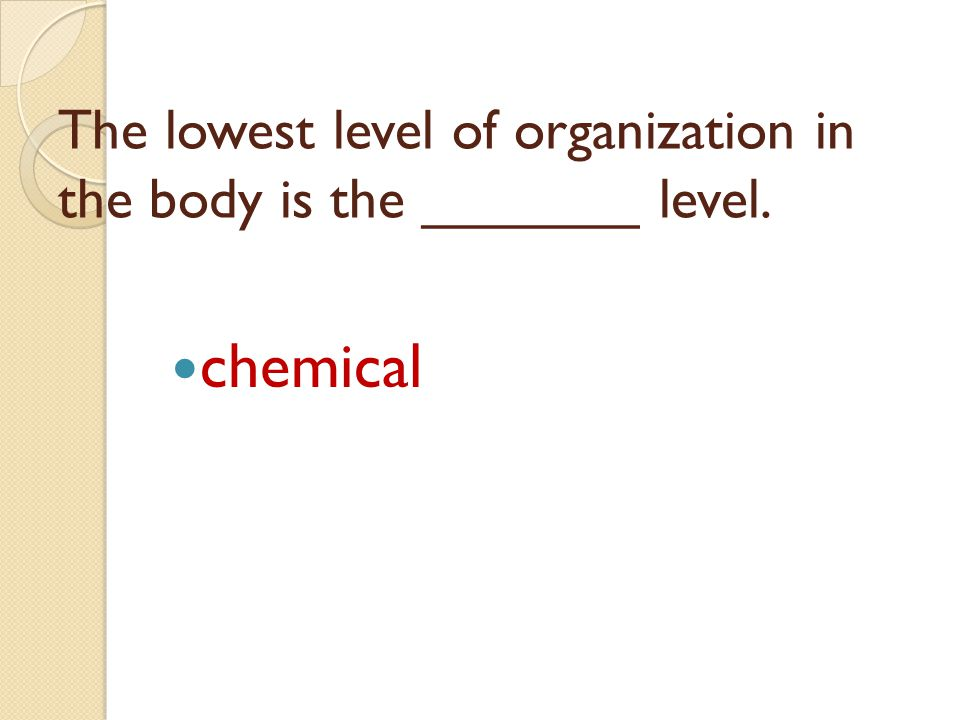The lowest level of organization in the body is the _______ level. chemical