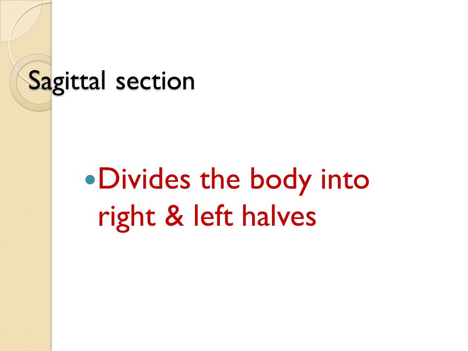 Sagittal section Divides the body into right & left halves