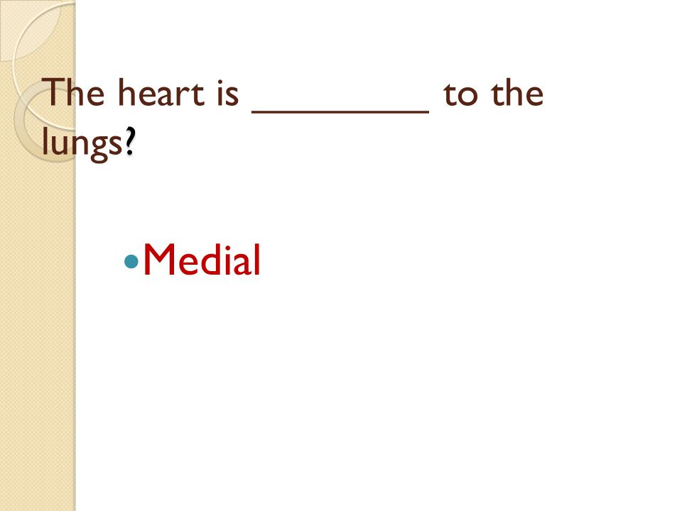 ? The heart is ________ to the lungs? Medial