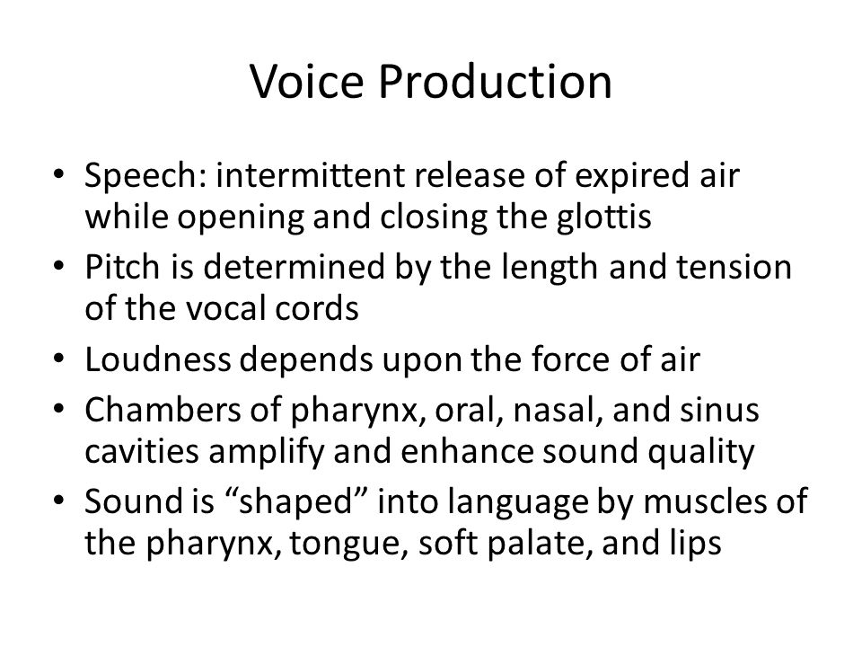Voice Production Speech: intermittent release of expired air while opening and closing the glottis Pitch is determined by the length and tension of th