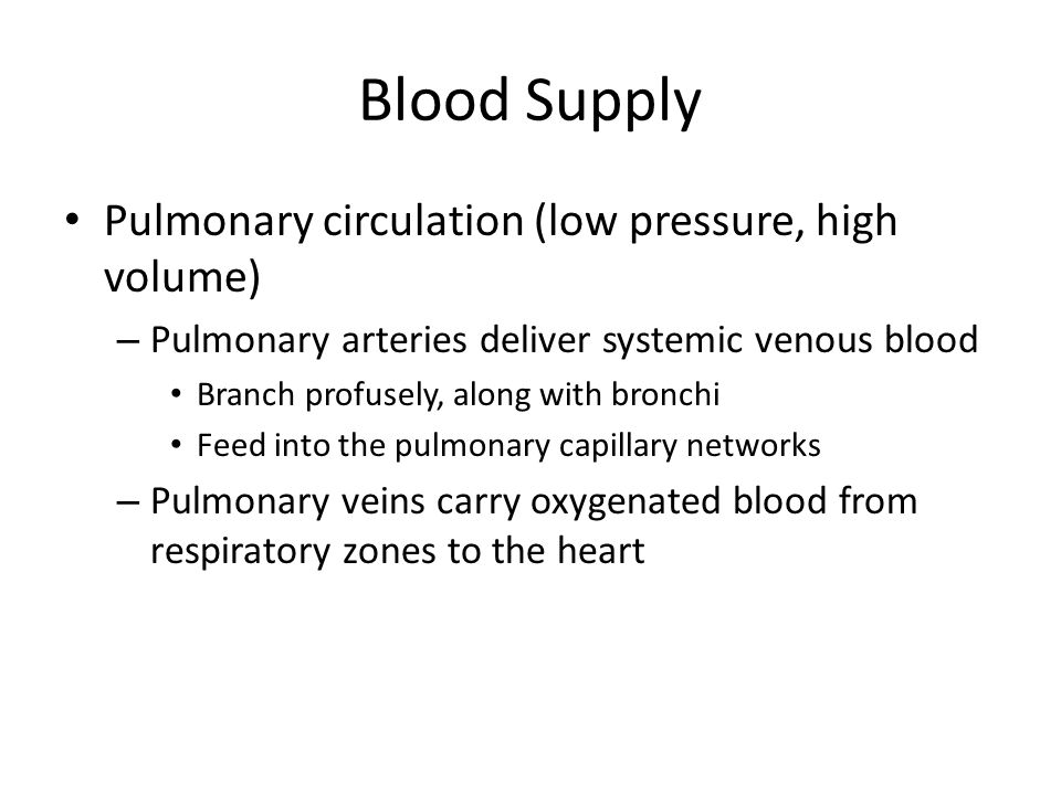 Blood Supply Pulmonary circulation (low pressure, high volume) – Pulmonary arteries deliver systemic venous blood Branch profusely, along with bronchi