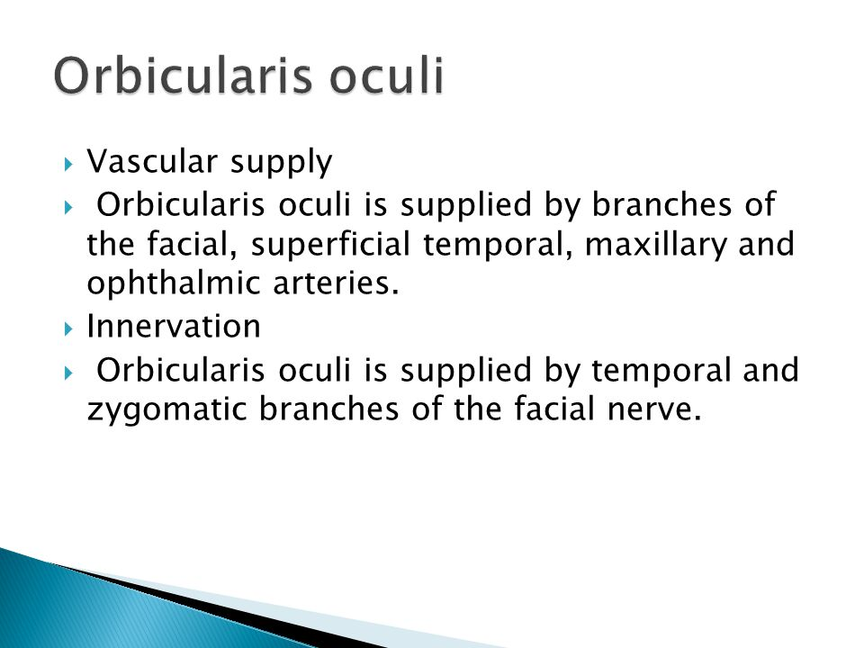  Vascular supply  Orbicularis oculi is supplied by branches of the facial, superficial temporal, maxillary and ophthalmic arteries.