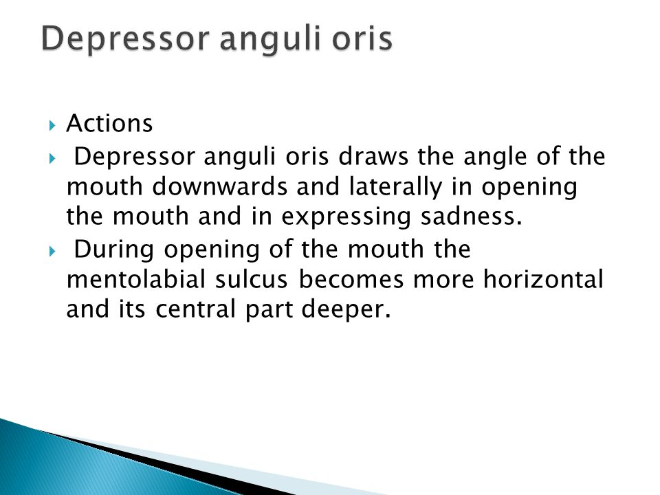  Actions  Depressor anguli oris draws the angle of the mouth downwards and laterally in opening the mouth and in expressing sadness.