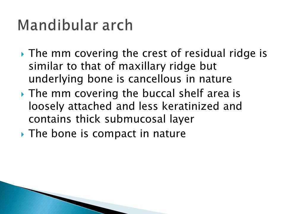  The mm covering the crest of residual ridge is similar to that of maxillary ridge but underlying bone is cancellous in nature  The mm covering the buccal shelf area is loosely attached and less keratinized and contains thick submucosal layer  The bone is compact in nature