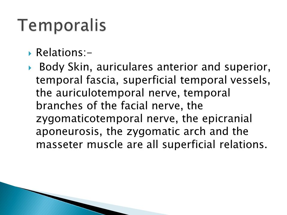  Relations:-  Body Skin, auriculares anterior and superior, temporal fascia, superficial temporal vessels, the auriculotemporal nerve, temporal branches of the facial nerve, the zygomaticotemporal nerve, the epicranial aponeurosis, the zygomatic arch and the masseter muscle are all superficial relations.