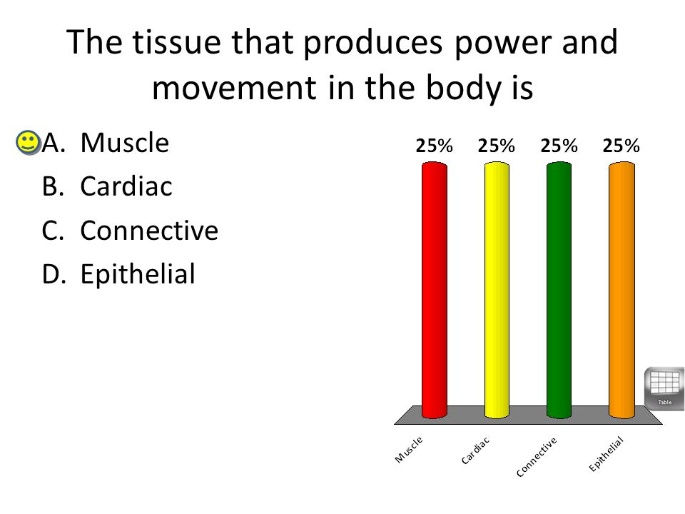 The tissue that produces power and movement in the body is A.Muscle B.Cardiac C.Connective D.Epithelial