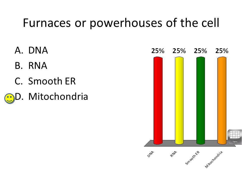 Furnaces or powerhouses of the cell A.DNA B.RNA C.Smooth ER D.Mitochondria