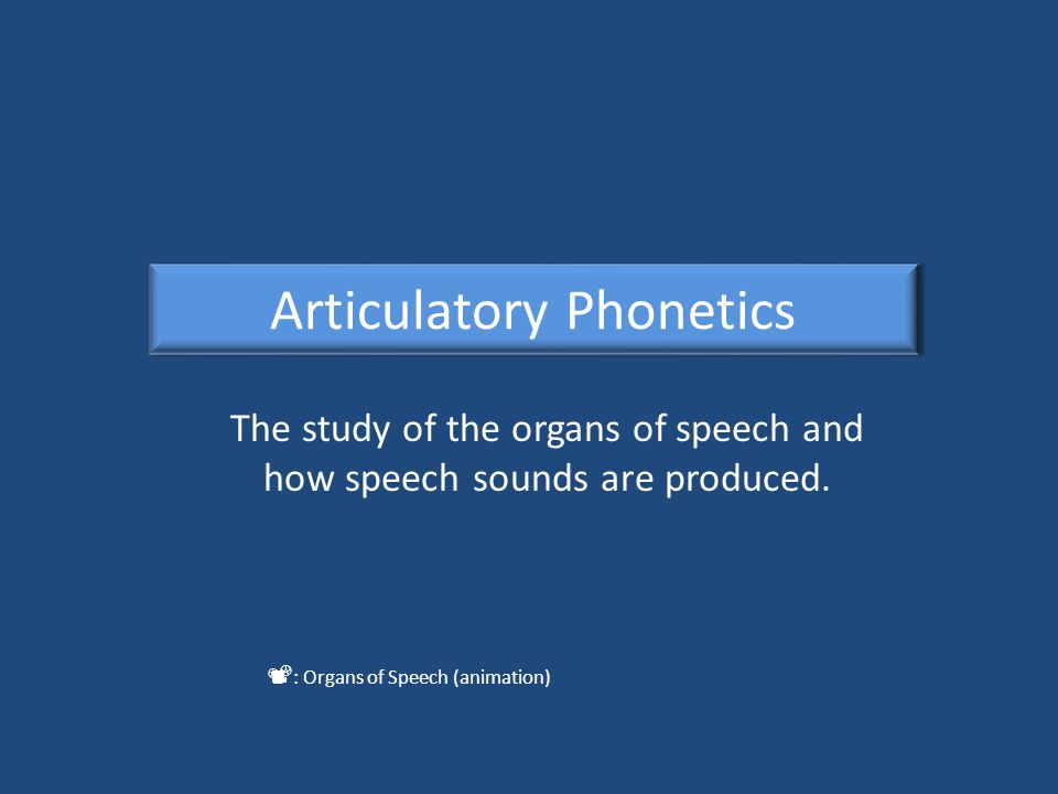 The study of the organs of speech and how speech sounds are produced.