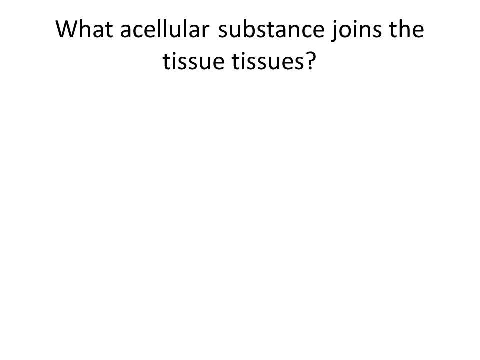 What acellular substance joins the tissue tissues