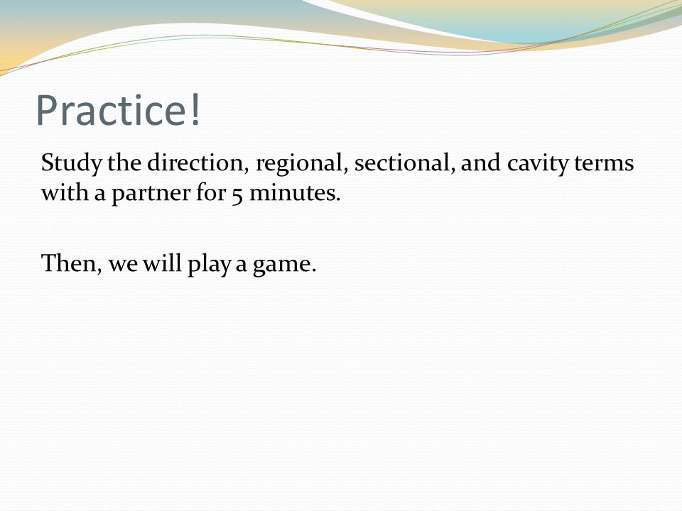 Practice.Study the direction, regional, sectional, and cavity terms with a partner for 5 minutes.