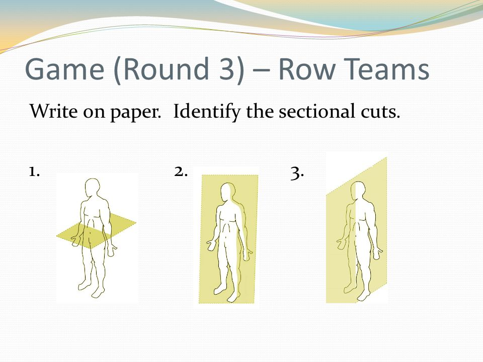 Game (Round 3) – Row Teams Write on paper. Identify the sectional cuts. 1. 2. 3.