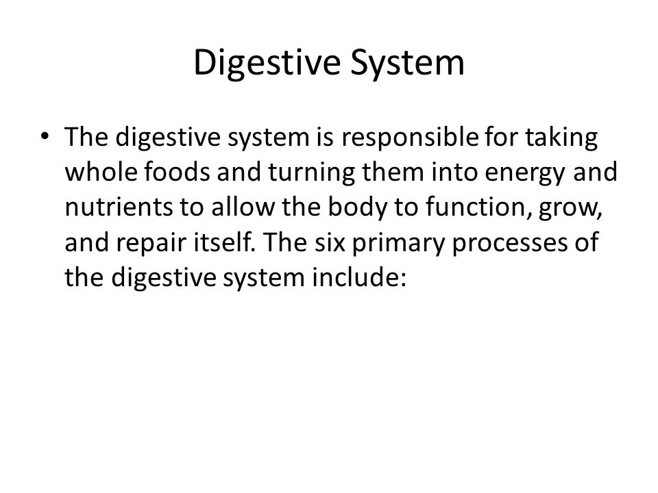 Digestive System The digestive system is responsible for taking whole foods and turning them into energy and nutrients to allow the body to function, grow, and repair itself.