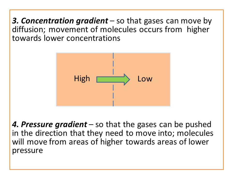 3. Concentration gradient – so that gases can move by diffusion; movement of molecules occurs from higher towards lower concentrations 4. Pressure gra