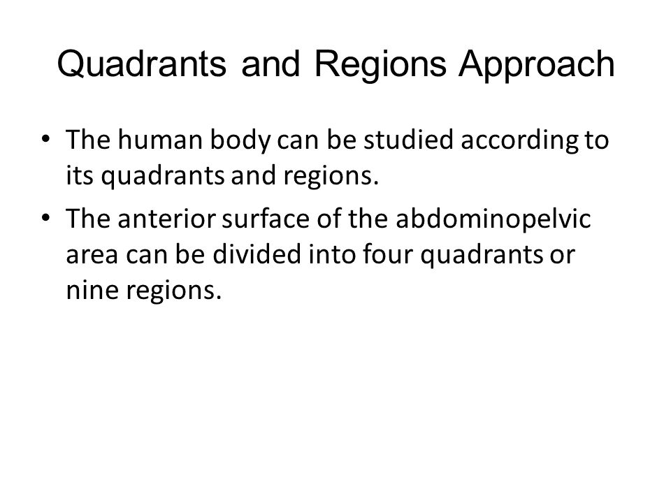Quadrants and Regions Approach The human body can be studied according to its quadrants and regions.