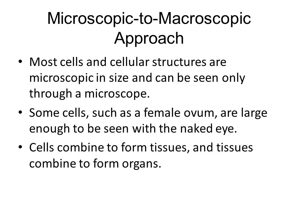 Microscopic-to-Macroscopic Approach Most cells and cellular structures are microscopic in size and can be seen only through a microscope.