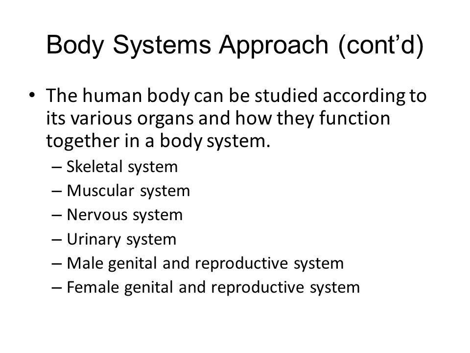 Body Systems Approach (cont'd) The human body can be studied according to its various organs and how they function together in a body system.