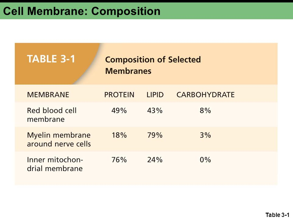 Cell Membrane: Composition Table 3-1