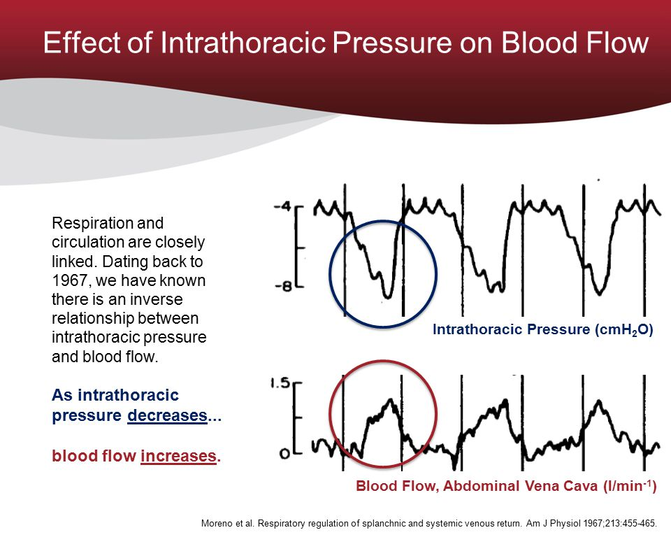 Moreno et al. Respiratory regulation of splanchnic and systemic venous return. Am J Physiol 1967;213:455-465. Effect of Intrathoracic Pressure on Bloo
