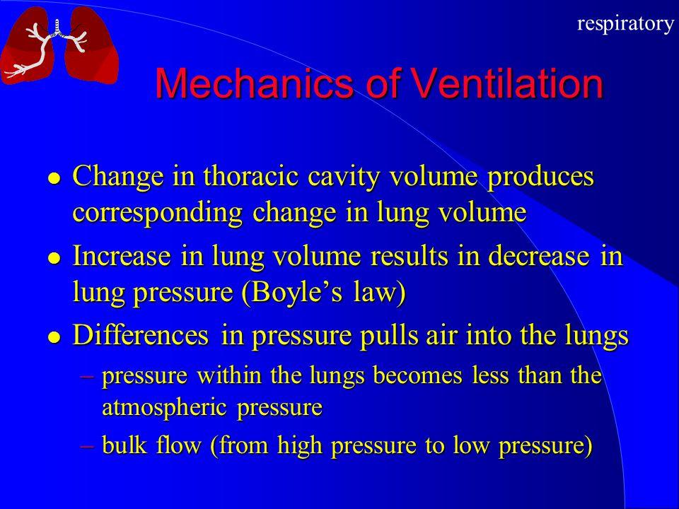 respiratory Mechanics of Ventilation Change in thoracic cavity volume produces corresponding change in lung volume Change in thoracic cavity volume pr