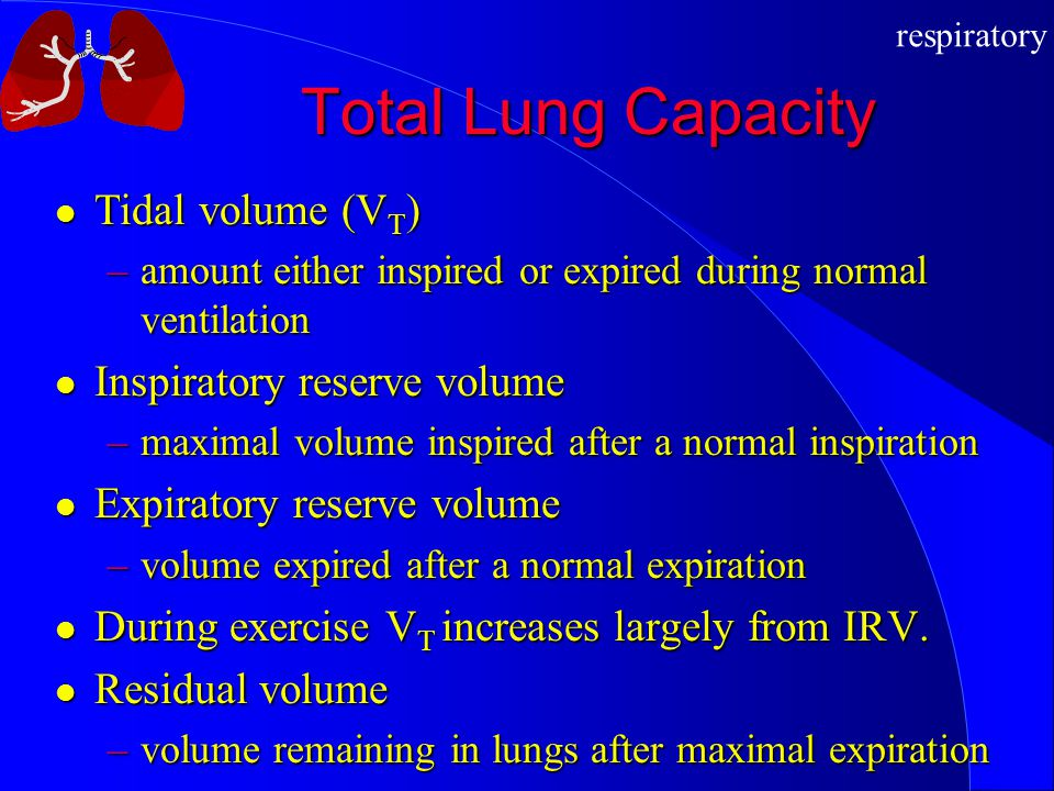 respiratory Total Lung Capacity Tidal volume (V T ) Tidal volume (V T ) –amount either inspired or expired during normal ventilation Inspiratory reser
