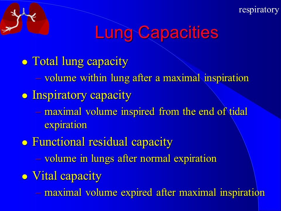 respiratory Lung Capacities Total lung capacity Total lung capacity –volume within lung after a maximal inspiration Inspiratory capacity Inspiratory c