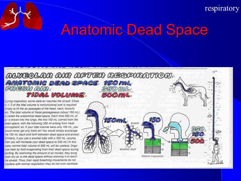 respiratory Anatomic Dead Space