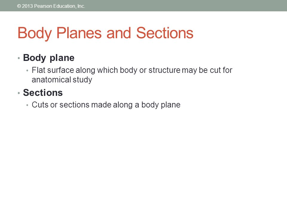 Body Planes and Sections The most frequently used body planes are sagittal, frontal and transverse which are at right angles to each other A section bears the name of the plane along which it is cut