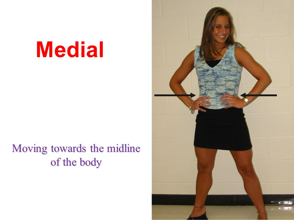 Medial Moving towards the midline of the body