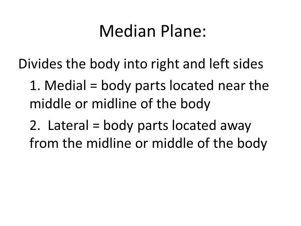 Median Plane: Divides the body into right and left sides 1.