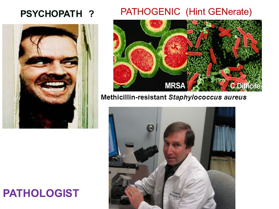 PSYCHOPATH PATHOLOGIST PATHOGENIC (Hint GENerate) Methicillin-resistant Staphylococcus aureus