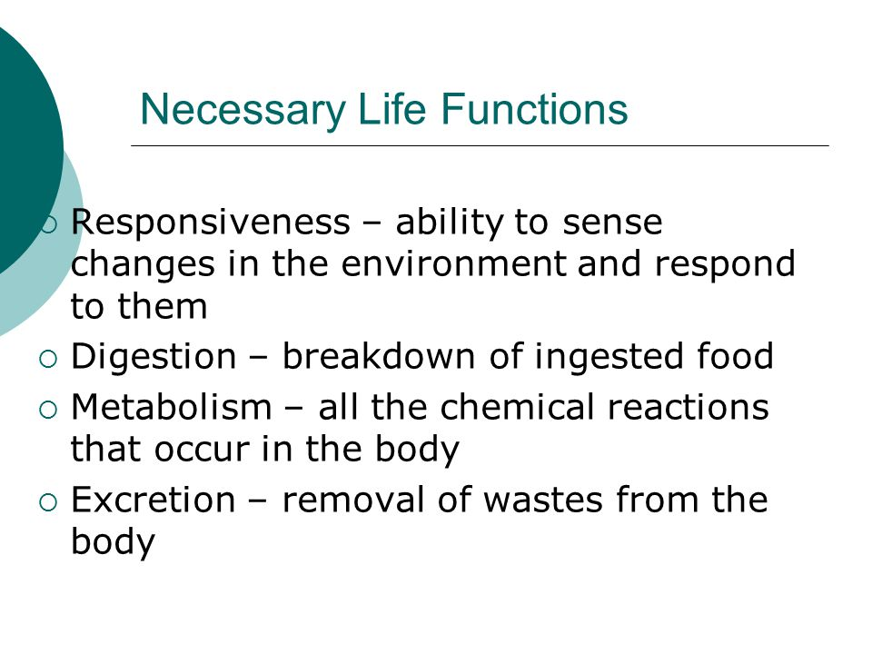 Necessary Life Functions  Responsiveness – ability to sense changes in the environment and respond to them  Digestion – breakdown of ingested food  Metabolism – all the chemical reactions that occur in the body  Excretion – removal of wastes from the body