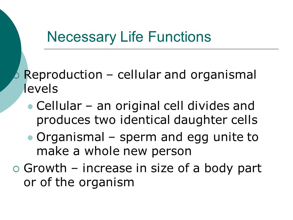 Necessary Life Functions  Reproduction – cellular and organismal levels Cellular – an original cell divides and produces two identical daughter cells Organismal – sperm and egg unite to make a whole new person  Growth – increase in size of a body part or of the organism