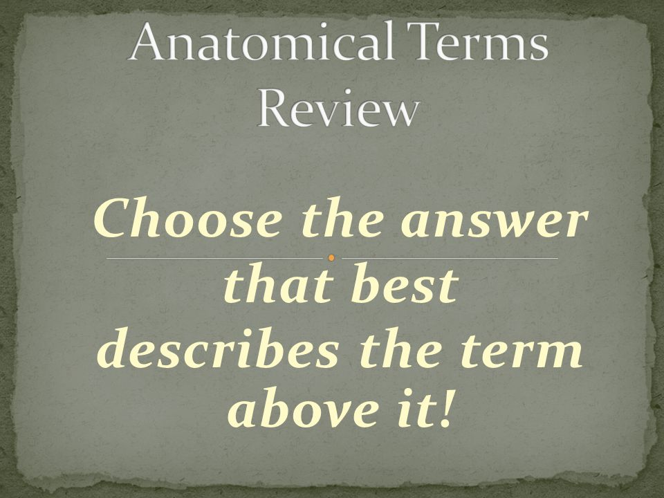 Choose the answer that best describes the term above it!
